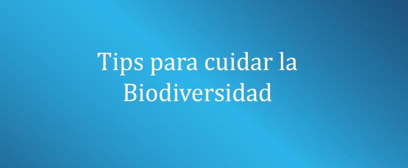 Tips para cuidar la Biodiversidad 🌎💪🌿🌱